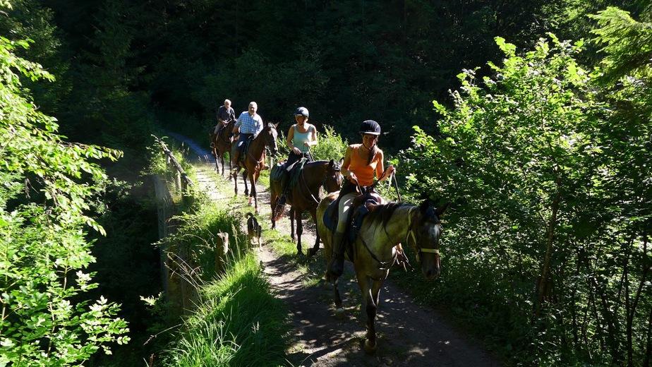A cavallo al Lago di Garda